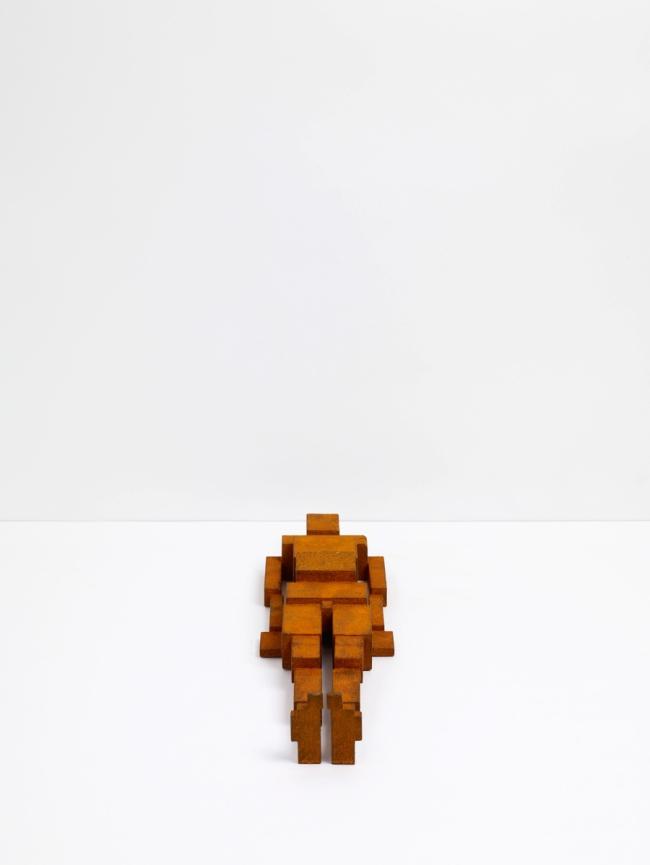 Antony Gormley. 'MEME CXLI' 2011