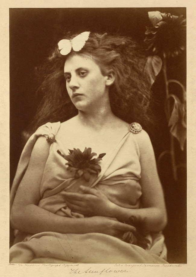Julia Margaret Cameron. 'The sunflower' 1866-1870