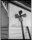 Marcus Bunyan. 'The Windmills of Don Q' 1992