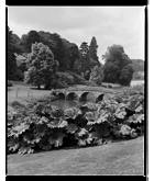 Marcus Bunyan. 'Bridge, Chatsworth House' 1993