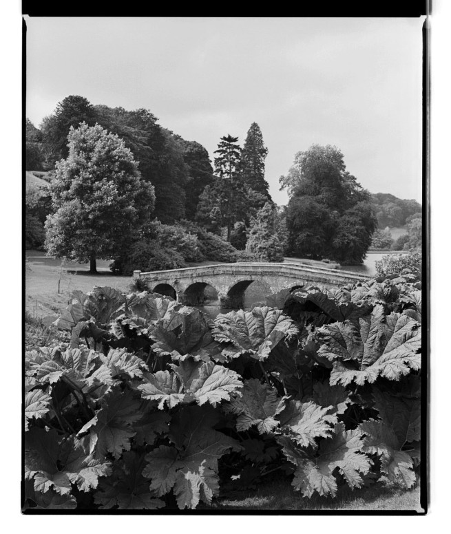 Marcus Bunyan. 'Landscape, Chatsworth House' 1993