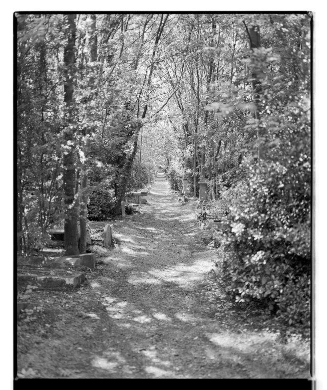 Marcus Bunyan. 'Death's pathway' 1993