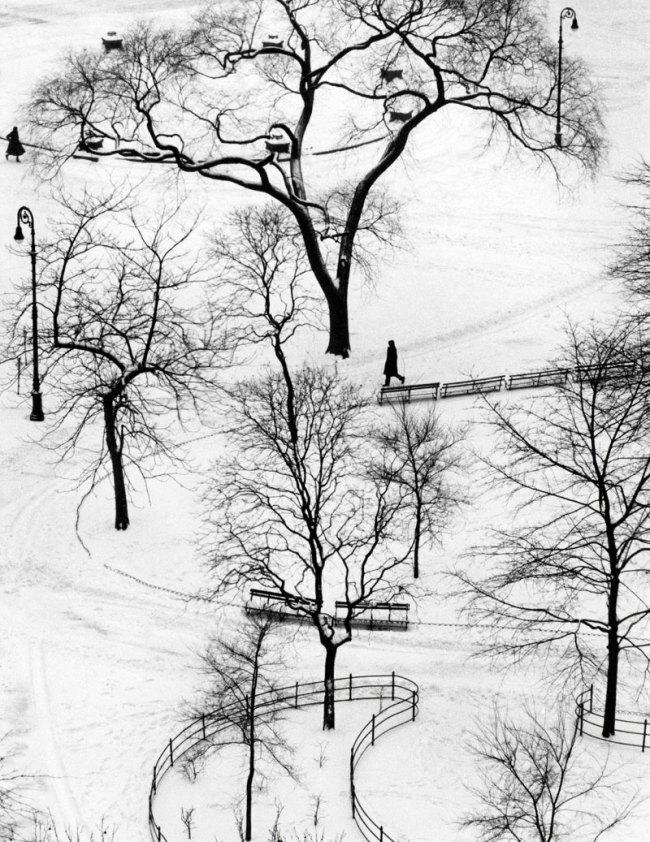 André Kertész. 'Washington Square' New York, January 9, 1954