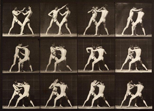 Eadweard Muybridge. Boxing; open-hand. Plate 340, 1887
