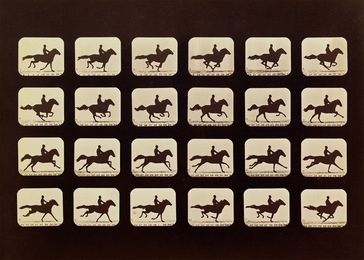 the galloping horse in the horse in motion a photography by edward muybridge Enter former governor of california leland stanford, a businessman and race-horse owner, and photographer eadweard muybridge the story was that stanford bet dr john d isaac $25,000 that at least one foot of a horse stays in contact with the ground at all times.
