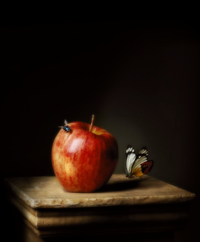 Robyn Stacey. 'Presentation (Apple)' 2011