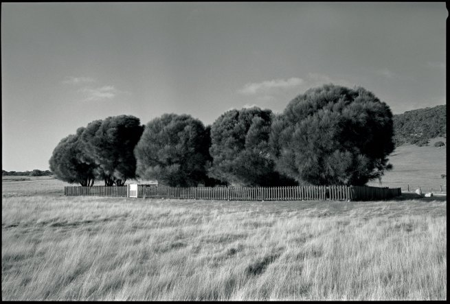Ricky Maynard. 'The Healing Garden, Wybalenna, Flinders Island, Tasmania' from 'Portrait of a Distant Land' 2005