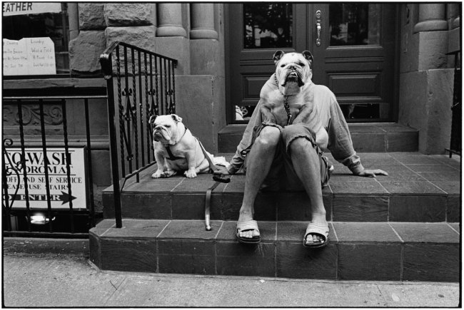 Elliott Erwitt. USA. New York City. 1988.