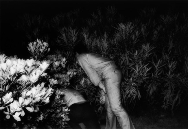 Kohei Yoshiyuki. 'Untitled' 1971 From the series 'The Park'