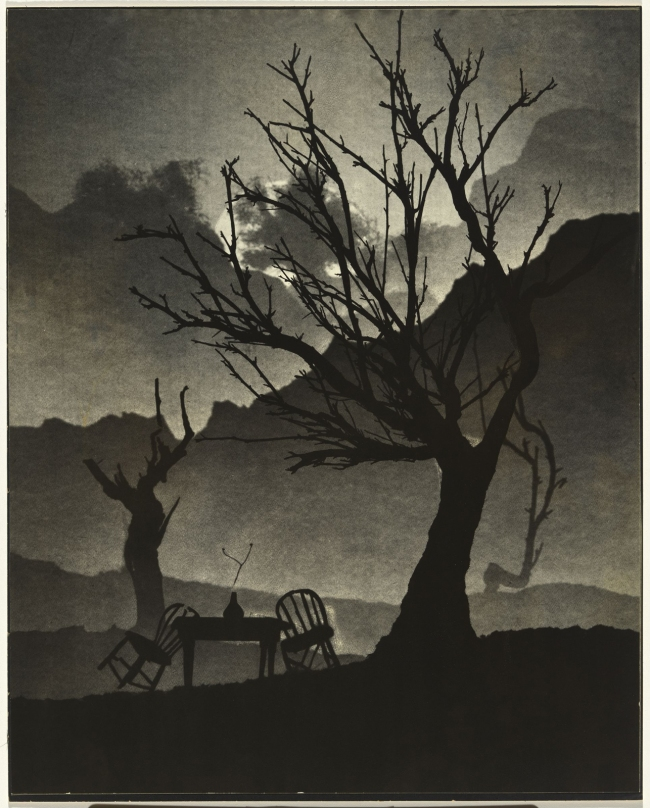 Virna Haffer (American, 1899-1974) 'Untitled [tree and chair]' c. 1962