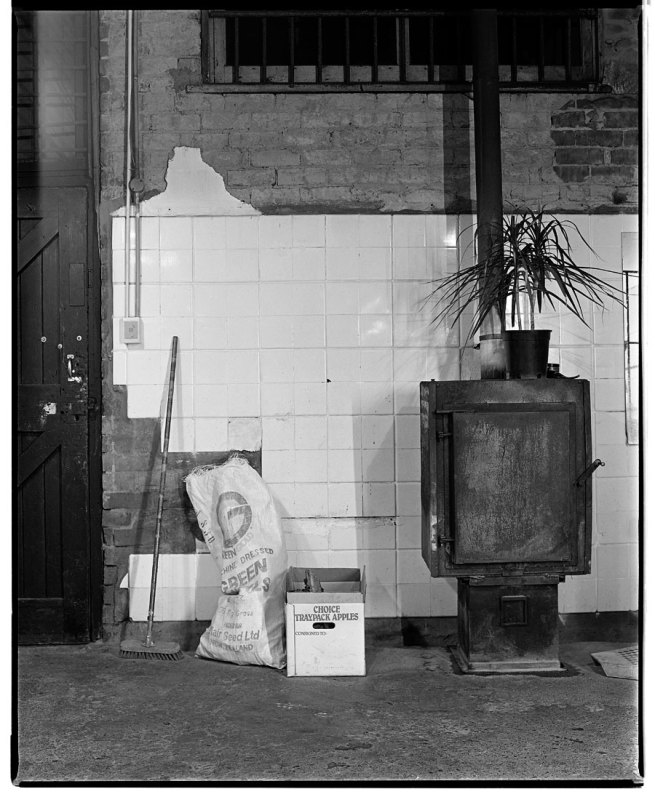 Marcus Bunyan. 'Standing stove, plant and broom' 1991