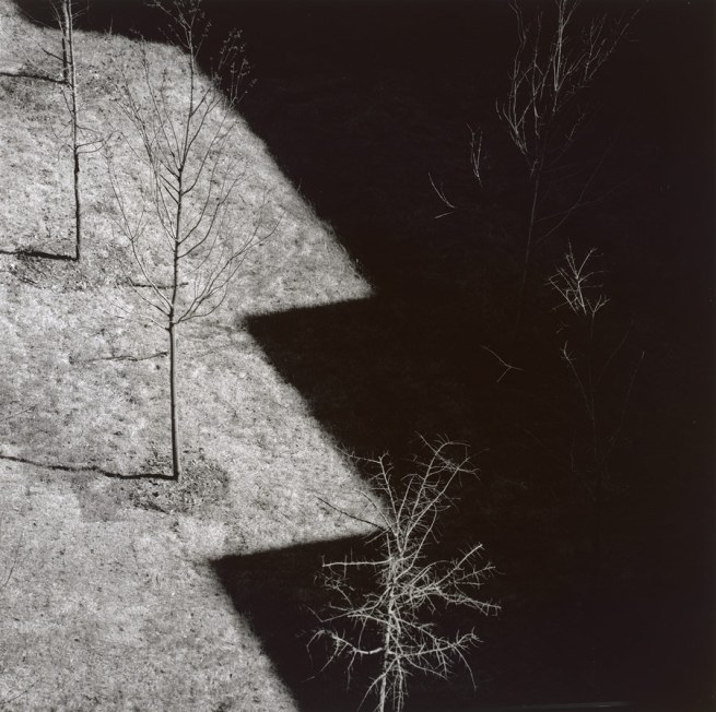 Harry Callahan.