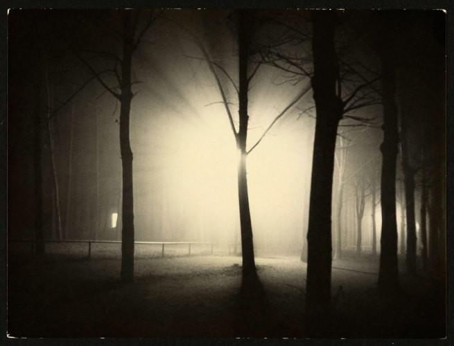 Lyonel Feininger (American, 1871-1956) 'Untitled [Night View of Trees and Street Lamp, Burgkühnauer Allee, Dessau]' 1928