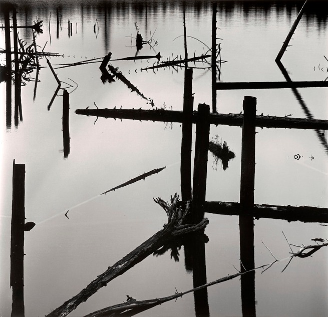 Brett Weston (American, 1911-1993) 'Water Reflection, Logging, Alaska' 1973