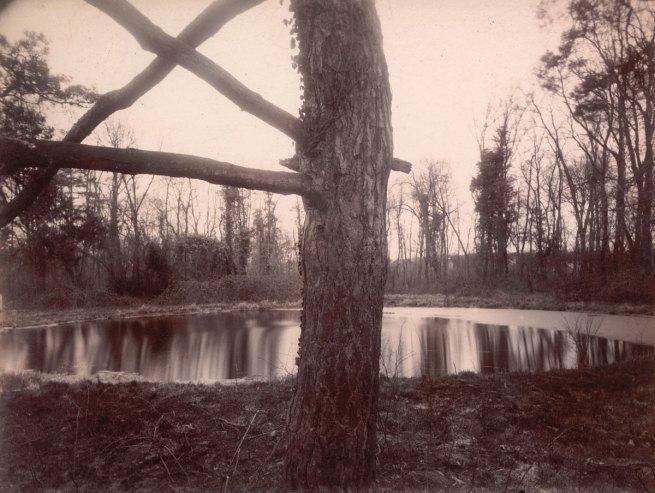 Eugène Atget. 'Parc de Sceaux, 7 h. matin' March 1925