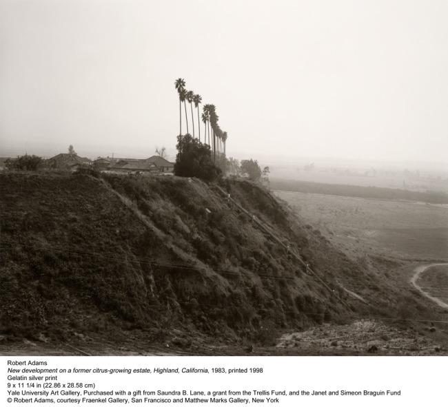 Robert Adams. 'New development on a former citrus-growing estate, Highland, California' 1983