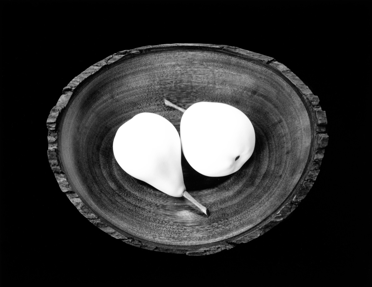 Paul Caponigro. 'Two Pears, Cushing, ME' 1999, gelatin silver print, 7 9/16 in. x 9 11/16 in. Currier Museum of Art, Manchester, New Hampshire. Gift of Paul Caponigro, photographer.