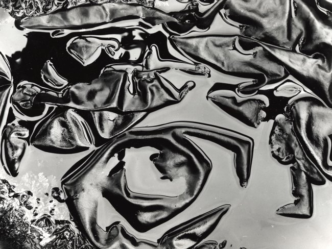 Brett Weston. '(Untitled) Tide Pool and Kelp' c. 1980