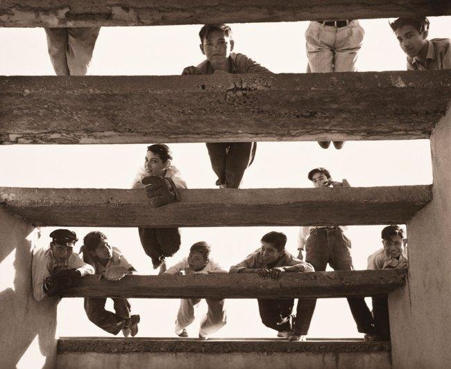 Lola Álvarez Bravo (Mexican, 1903-1993) 'The Freeloaders' c. 1955