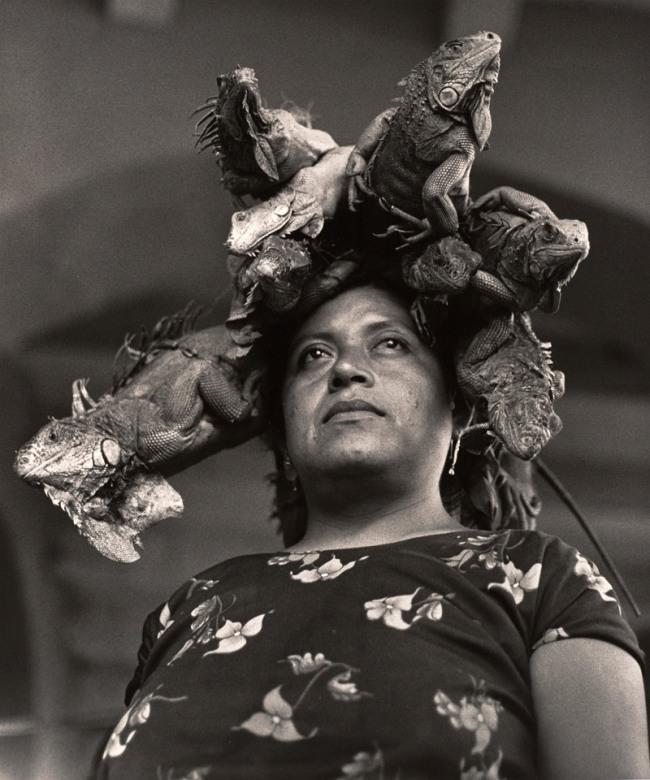 Graciela Iturbide(Mexican, b. 1942) 'La Nuestra Senora de las Iguanas, Juchitan, Oaxaca, Mexico' (Our Lady of the Iguanas, Juchitan, Oxaca, Mexico) 1979