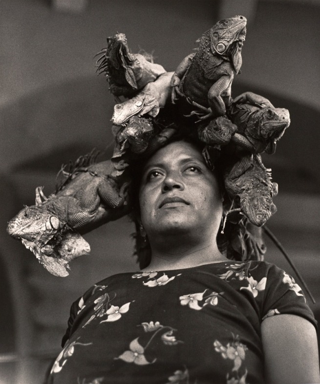 Graciela Iturbide (Mexican, b. 1942) 'La Nuestra Senora de las Iguanas, Juchitan, Oaxaca, Mexico' (Our Lady of the Iguanas, Juchitan, Oxaca, Mexico) 1979