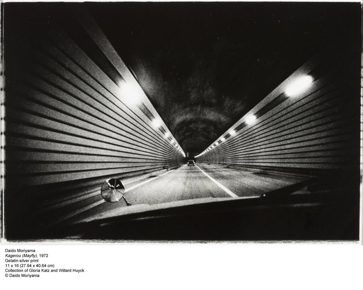 Daido Moriyama. 'Kagerou (Mayfly)' 1972