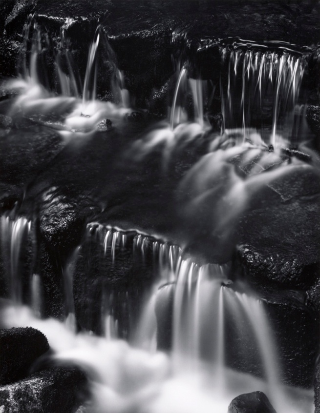 Ansel Adams. 'Fern Spring, Dusk, Yosemite Valley' c. 1961