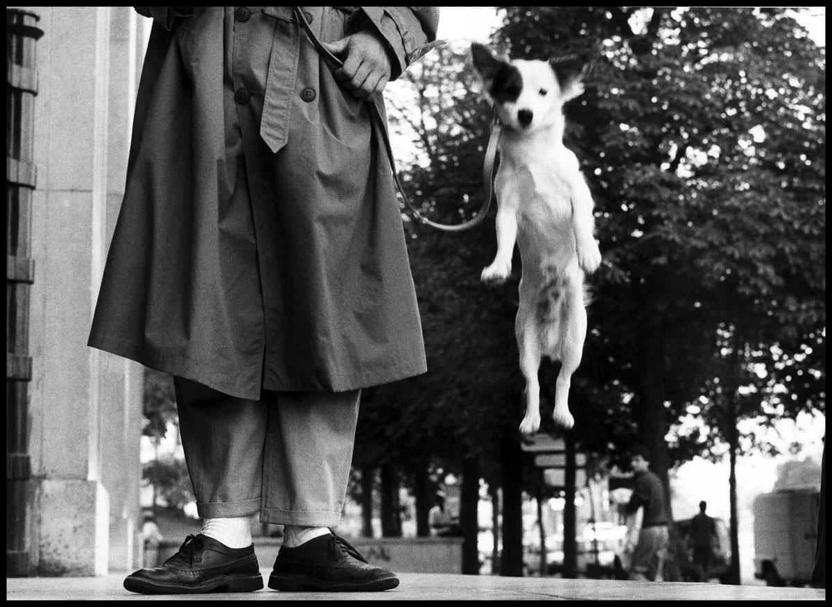 Elliott Erwitt. 'FRANCE. Paris. 1989' 1989
