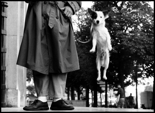 Elliott Erwitt. 'FRANCE. Paris. 1989' 1989