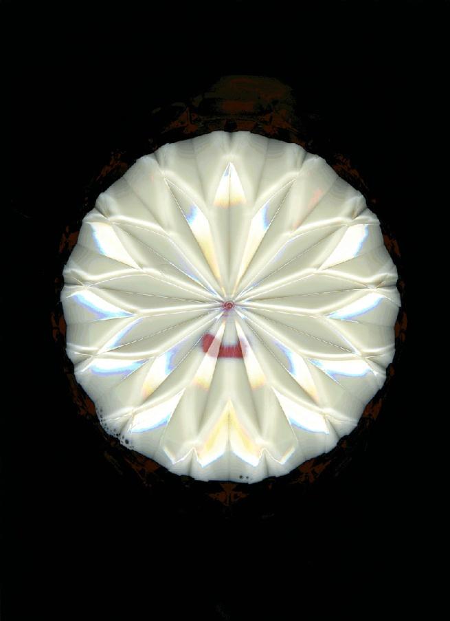 Chantal Faust. 'Lap Milk' 2007