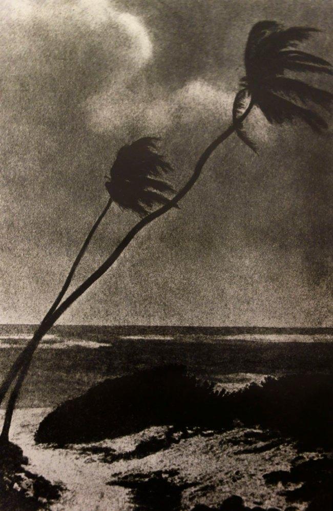 Pat Brassington. 'Untitled (triptych)' 1989