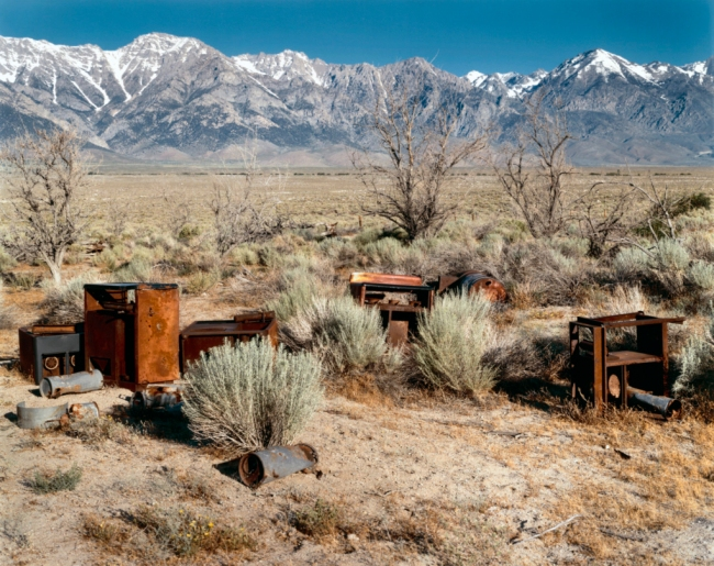 Virginia Beahan (American, b. 1946) and Laura McPhee (American, b. 1958) 'Apple Orchard, Manzanar Japanese-American Relocation Camp, Owens Valley, California' 1995