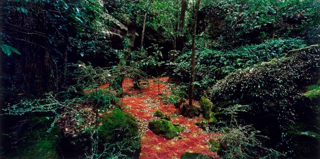 Rosemary Liang. 'groundspeed (Red Piazza) #04' 2001