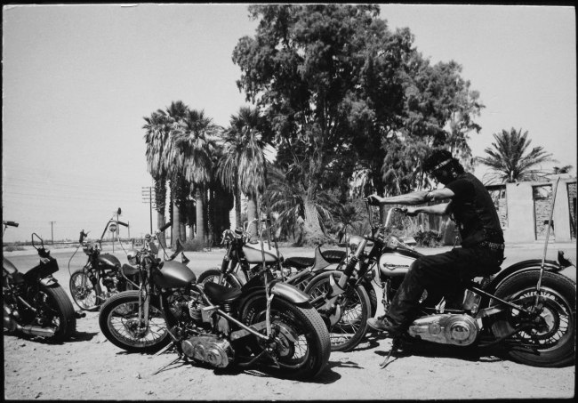 Dennis Hopper. 'Guy With 5 Hogs' 1961-67