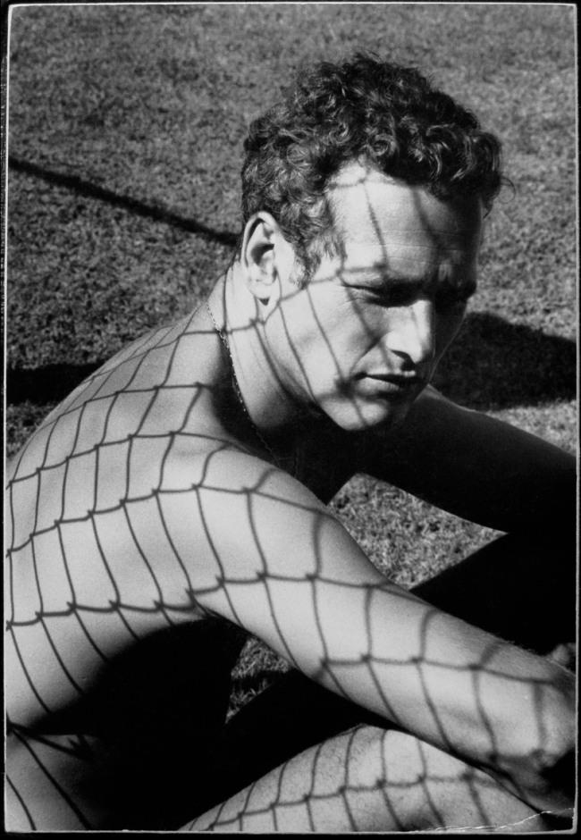 Dennis Hopper. 'Paul Newman' 1964