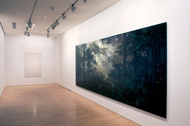 Installation view of 'Thomas Demand' at NGVI showing, at right, 'Lichtung / Clearing' 2003