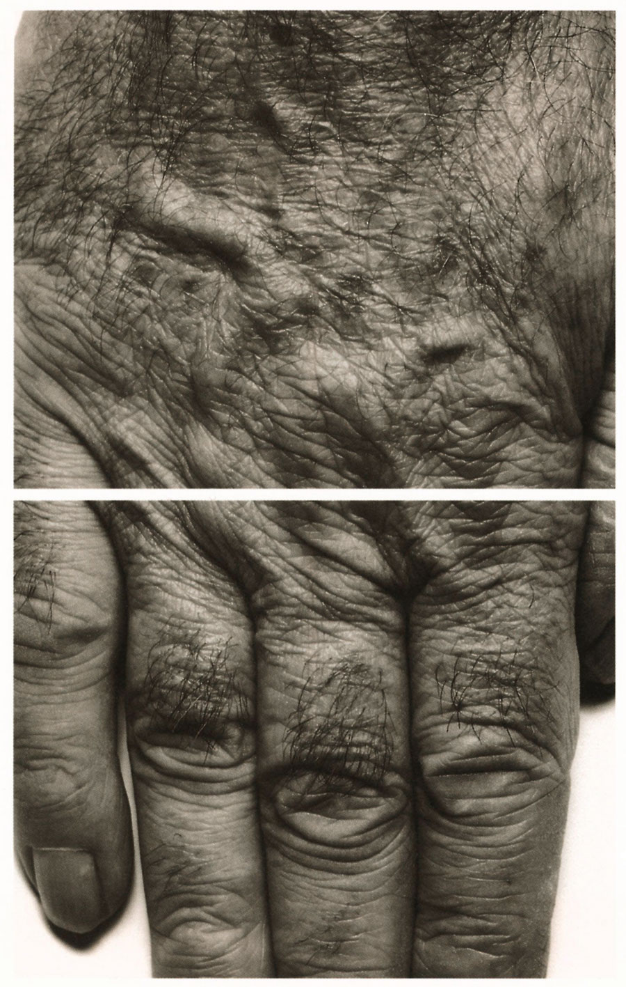 john coplans self portrait interlocking fingers no 17