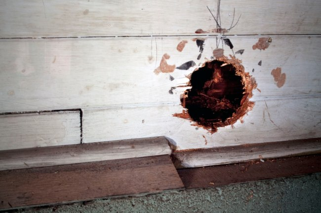 Jeff Wall. 'Pipe Opening' 2002 (detail)