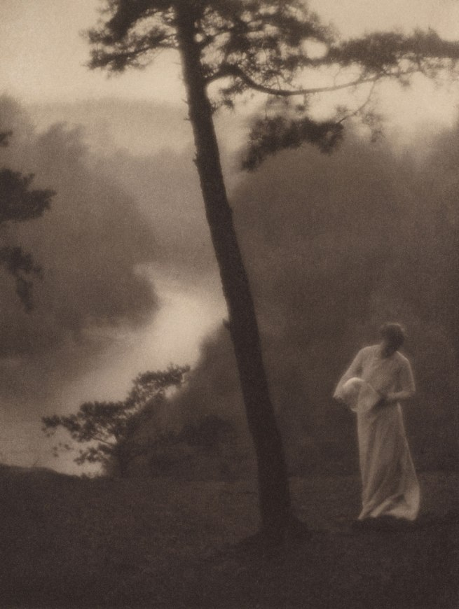 Clarence H. White (American, 1871-1925) 'Morning' 1905