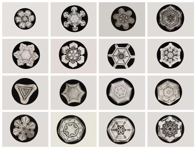 Wilson Alwyn Bentley (American, 1865-1931). 'Snowflakes' c. 1905
