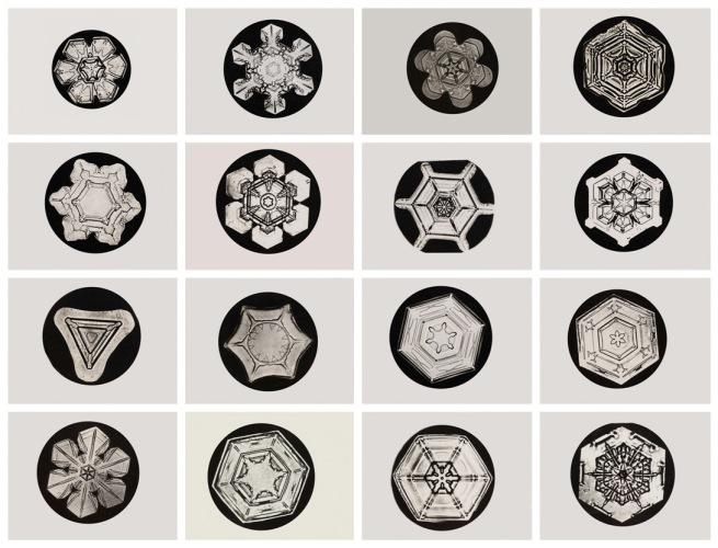 Wilson Alwyn Bentley, American (1865-1931). 'Snowflakes' c. 1905