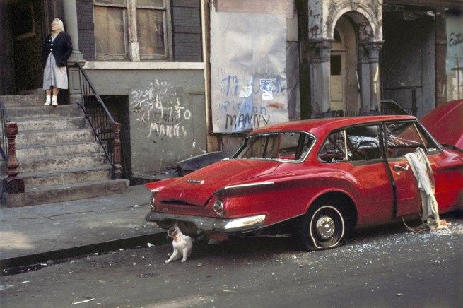 Helen Levitt. 'Cat next to red car, New York' 1973
