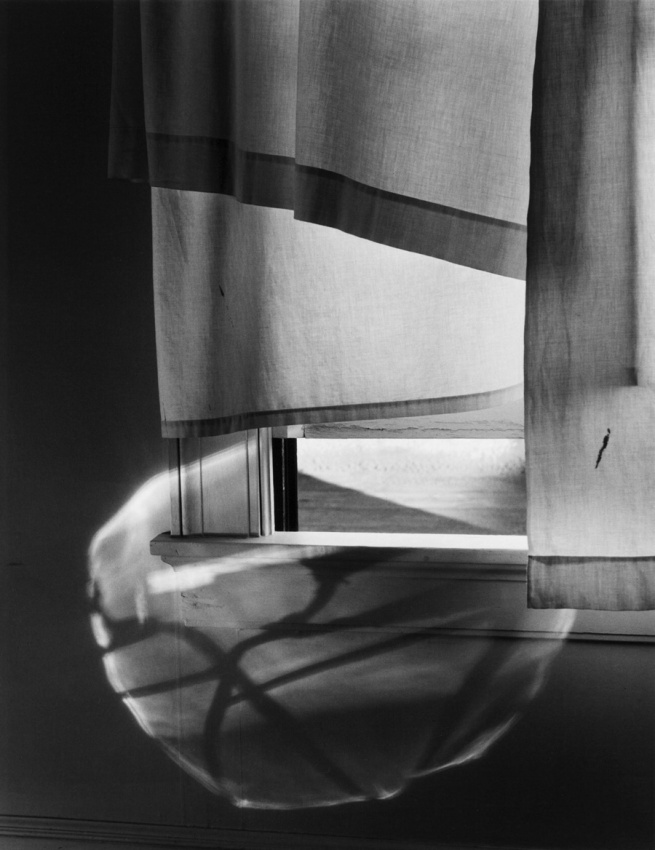 Minor White. 'Windowsill daydreaming' 1958