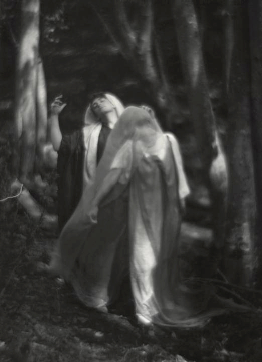 Imogen Cunningham. 'The Wood Beyond the World' c. 1912