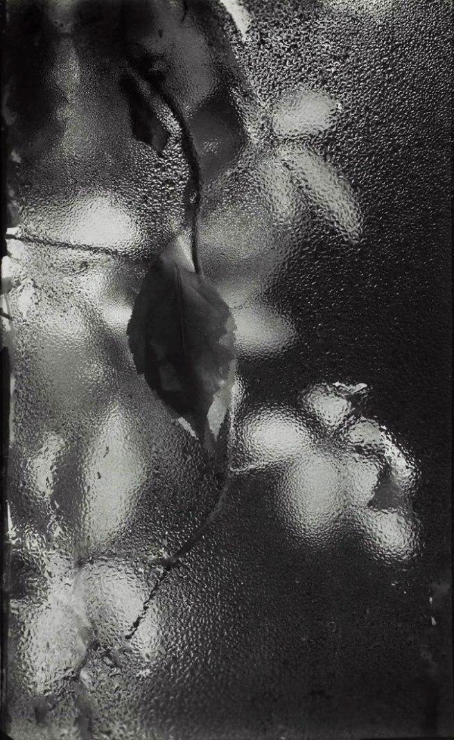 Josef Sudek. 'From the Window of My Atelier' 1940