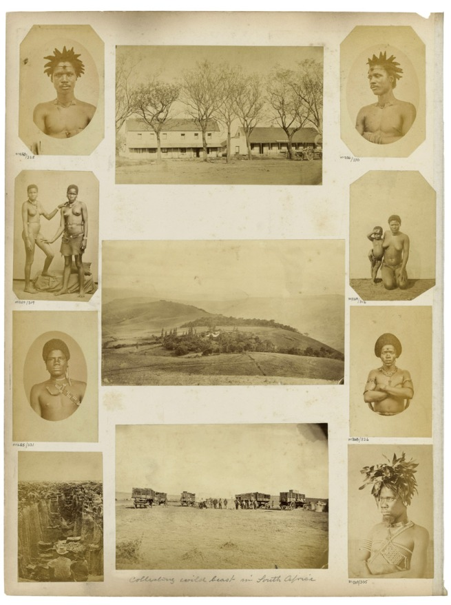 G. T. Ferneyhough (attr.) and unidentified photographers. 'Albumen prints mounted to album page' South Africa, last third of the nineteenth century