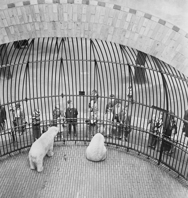 Roman Vishniac. 'People behind bars, Berlin Zoo' early 1930s