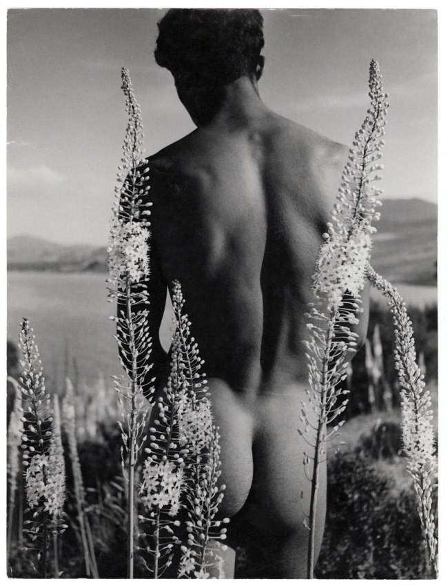 Herbert List. 'Young Arab with foxtail lilies, Hammamet, Tunisia' 1935
