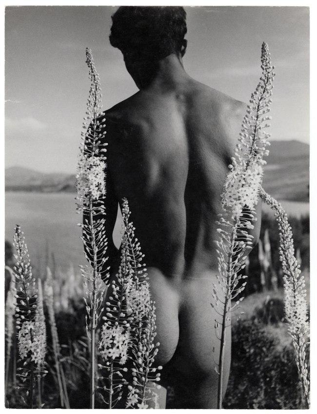 Herbert List. 'Young Arab with foxtail lilies, Hammamet, Tunisia' 1935