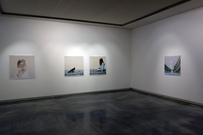 Installation view of 'Petrina Hicks: Selected Photographs, 2013' at Helen Gory Galerie